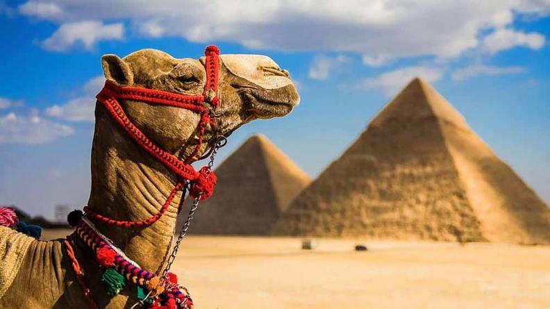 Можно ли обойтись без туристической страховки?