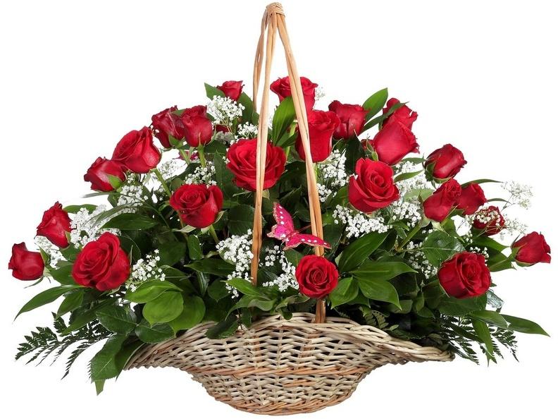 Как выбрать свежие розы на подарок?