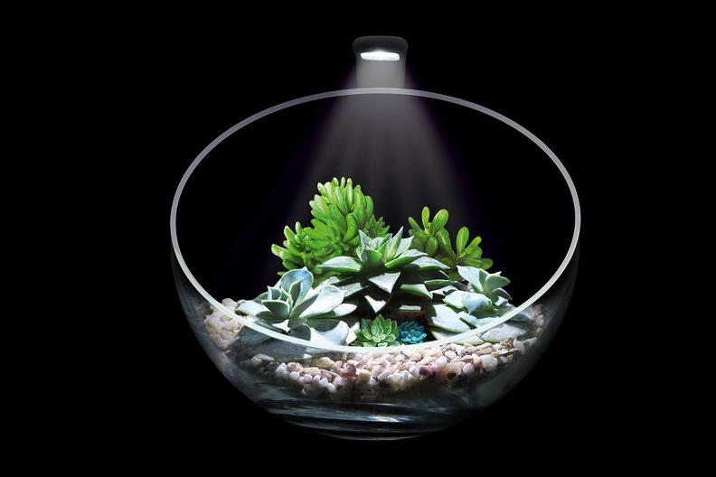 Выбор светильника для аквариума