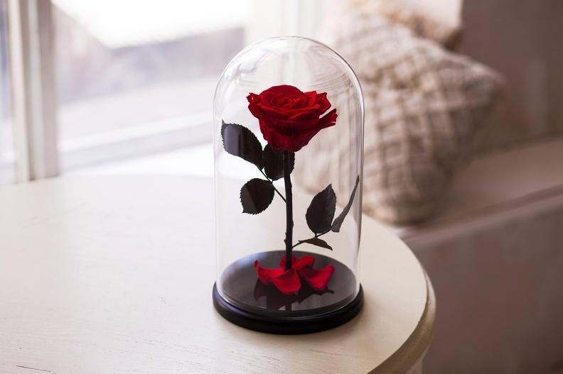Как определить подлинность розы в колбе