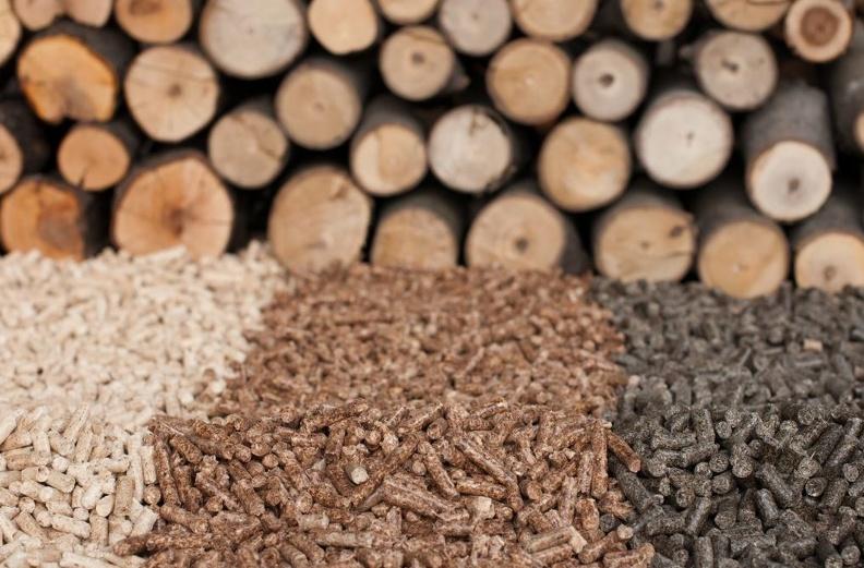Как происходит переработка биомассы