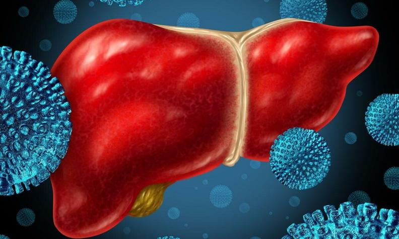 Софосбувир - новая возможность для эффективной борьбы с вирусным гепатитом