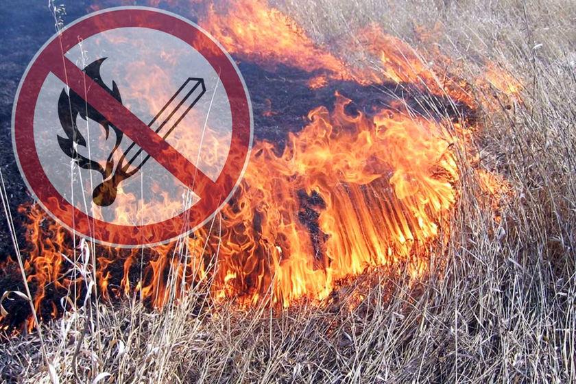 В ДНР был введен противопожарный режим